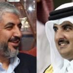 قطر وحماس الارهابية