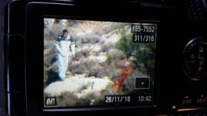 ارهاب الحرائق فلسطيني